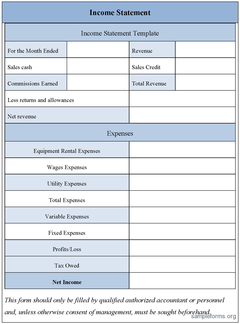 profit and loss statement template .