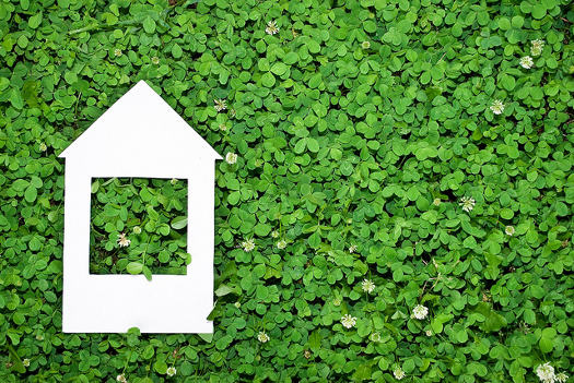 How to make your home improvement project eco friendly for Green home renovations