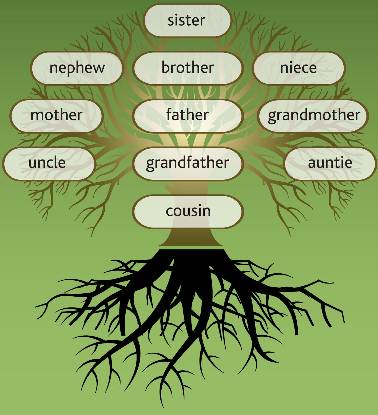 Design Your Own Mobile Home Online How Family Tree Workshops And Webinars Can Help Your Research