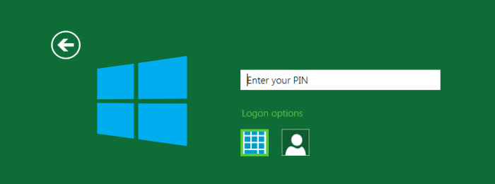 win-8-pin-login