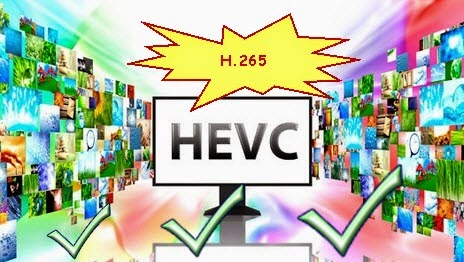 Step-by-step Guide on Working Pavtube H.265 Video Converter