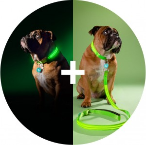 Squeaker_Poochlight_Green_LED_Light_Up_Collar_and_Leash_Combo_Pack