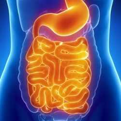 digestive-complications