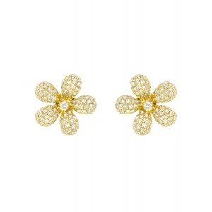 Customer Guide for the Buyers to Buy Gold Earrings Online