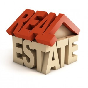 Real Estate in India: the Big Players in the Market