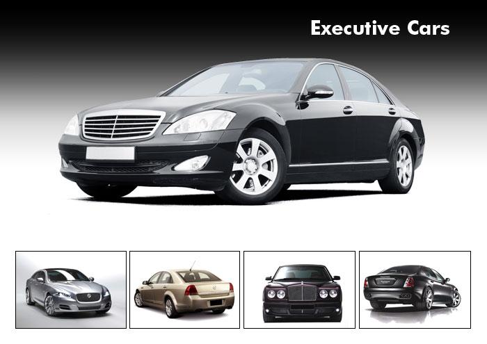 executive(3)