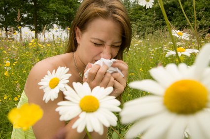 Important Things to Know if You Think You Have an Allergy
