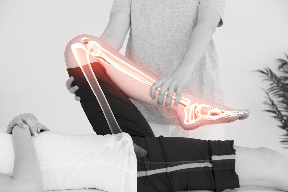 joints bones one health and social care essay Free essays and research papers on medicine, healthcare, fitness - healtheappointmentscom  part of the limb where two bones meet  filament fossa health health .
