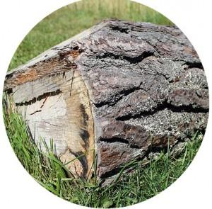 Garden Timber