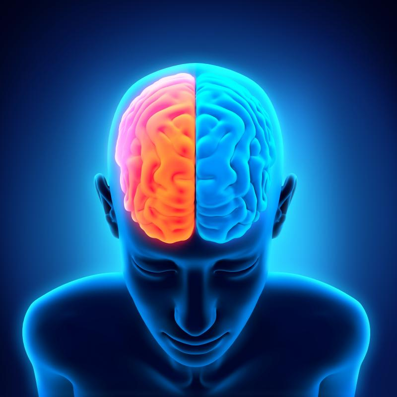Types of Brain Enhancement Supplements for Improving Brain Function