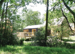 Burnbake Forest Lodges in Hampshire