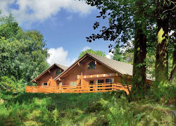 Conifer Lodges in South West Scotland