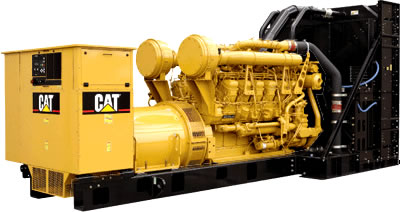 cat generator