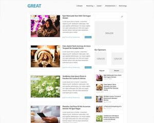 10 Best WordPress Free Themes for 2017