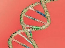 Why DNA Testing can Change Your Lifestyle