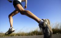 Can Aerobic Exercises Improve Cardiorespiratory Endurance?