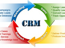 Could CRM Software Sell Domains Faster?