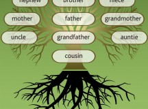 How Family Tree Workshops and Webinars Can Help Your Research