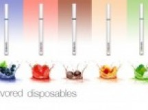 Difference between Rechargeable and Disposable Vaporizers