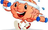 How Vitamin B12, Antioxidants, Alpha GPC, Creatine and Omega 3 Contribute to the Brain Health