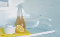 Useful Hints of Easier Fridge Cleaning & Maintenance