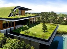 What You Should Know When Buying an Eco-Friendly House