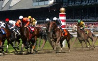 Back to Basics: Strategies for Successful Wagering on Online Horse Racing