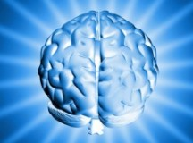 Importance of Brain Enhancing Supplements
