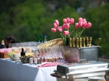 5 Excellent Outdoor Party Themes
