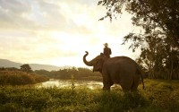 Thailand – What Else to Explore other than Temples and Beaches