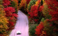 Top Six Fall Weather Effects On Driving