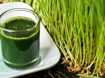 5 Great Health Reasons to Try Wheatgrass