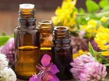 6 Easy Medical Uses of Essential Oils