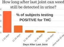 How To Pass A Urine Drug Test After College?