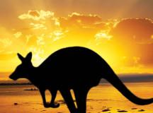 7 Tips for Road Trips Through Australia