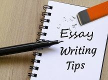 Want To Start Professional Essay Writing?