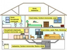 Some Dangers You Might Be Exposed to Inside Your Home