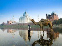 Recommended Places to Visit in India for Culture and Natural Beauties