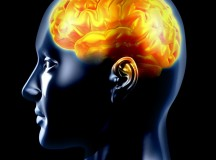 Types of Brain Lesions and Symptoms