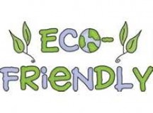 How Can Schools Become More Eco-friendly?