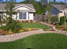 Surprising Things in Your Yard that Require Maintenance