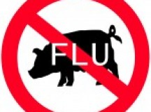 Could Swine Flu be Coming Back in 2014?