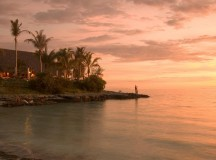 Southern Africa Highlight: Mozambique