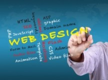 Understanding the Most Crucial Elements of Web Design