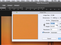 Working with Tabbed Windows and Combining Images in Photoshop