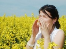 Helpful Tips For Reducing The Allergens In Your Home