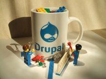 8 Reasons You Should Use Drupal