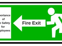 Importance of Fire Safety for Employees