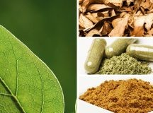 Beginners Guide To Kratom And What This Is Good For