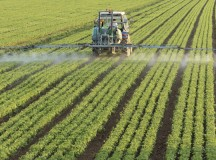 Evolution of Inventions Facilitate Agricultural Success